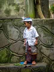 Java Boy 1